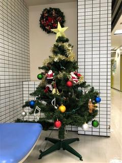 明石病院クリスマスツリー.jpeg